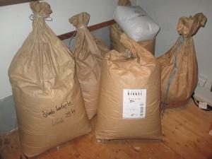 Speltvete, Ölandsvete, Naken havre, Naket korn och en äldre sorts råg från första halvan av 1900-talet. Sammanlagt ca. 100 kg.