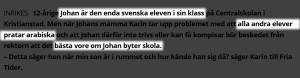 enda-svenska-eleven-i-sin-klass-kristianstad-001
