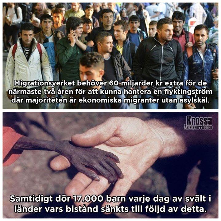 hjalp-till-ekonomiska-migranter-dodar-verkligt-behovande-001