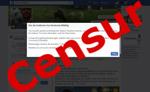 censur-facebook-20160725-000