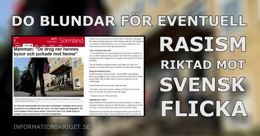 do-blundar-for-eventuell-rasism-mot-svensk-flicka-010