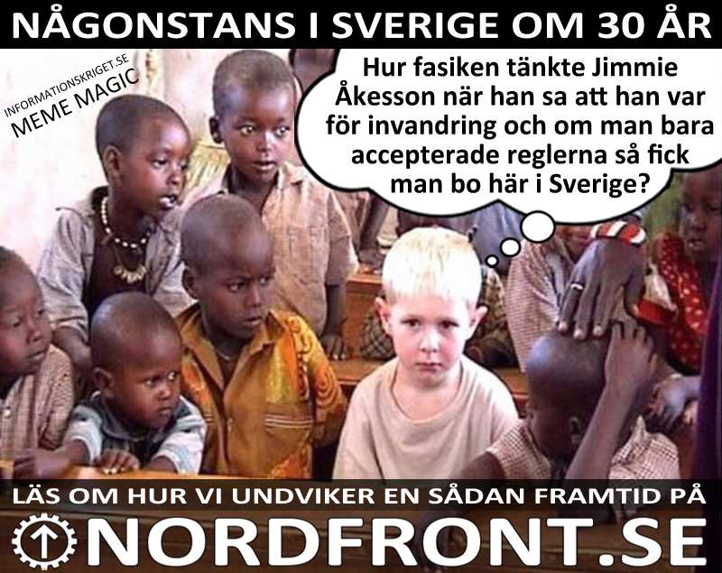 sd-och-invandringen-040